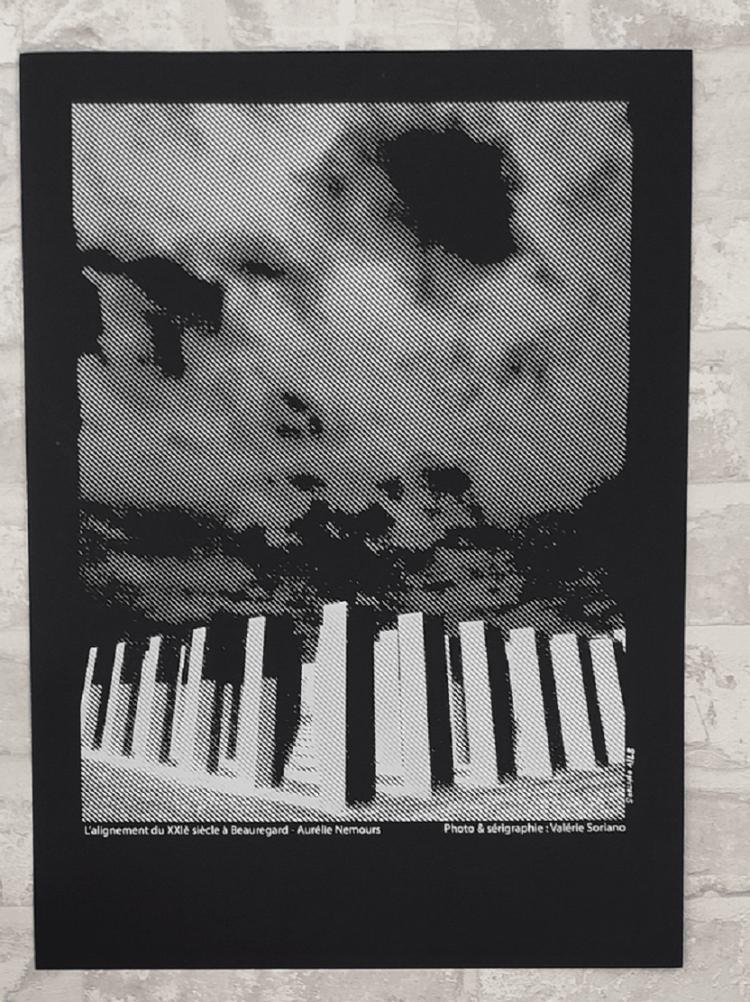 affiche-serigraphie-colonnes-frac-rennes